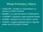 wheat prehistory history