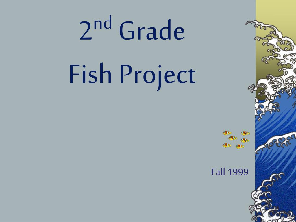 2 nd grade fish project l.