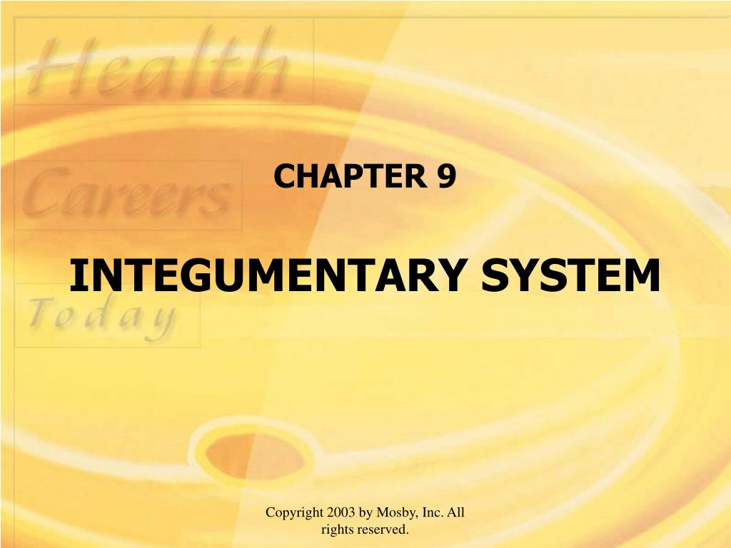 chapter 9 integumentary system l.