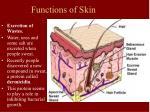 functions of skin23