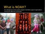 what is noah