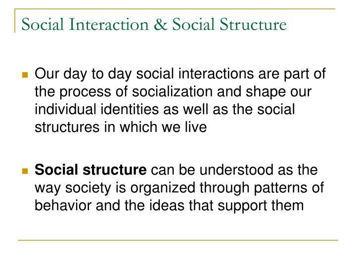 Social interaction social structure