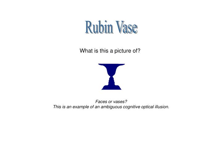 Ppt Optical Illusions V10 Powerpoint Presentation Id151248