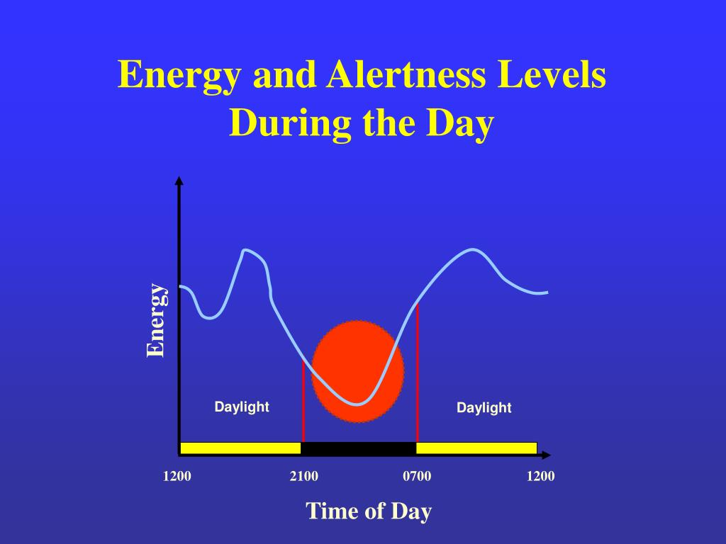Energy and Alertness Levels