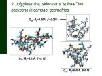 in polyglutamine sidechains solvate the backbone in compact geometries