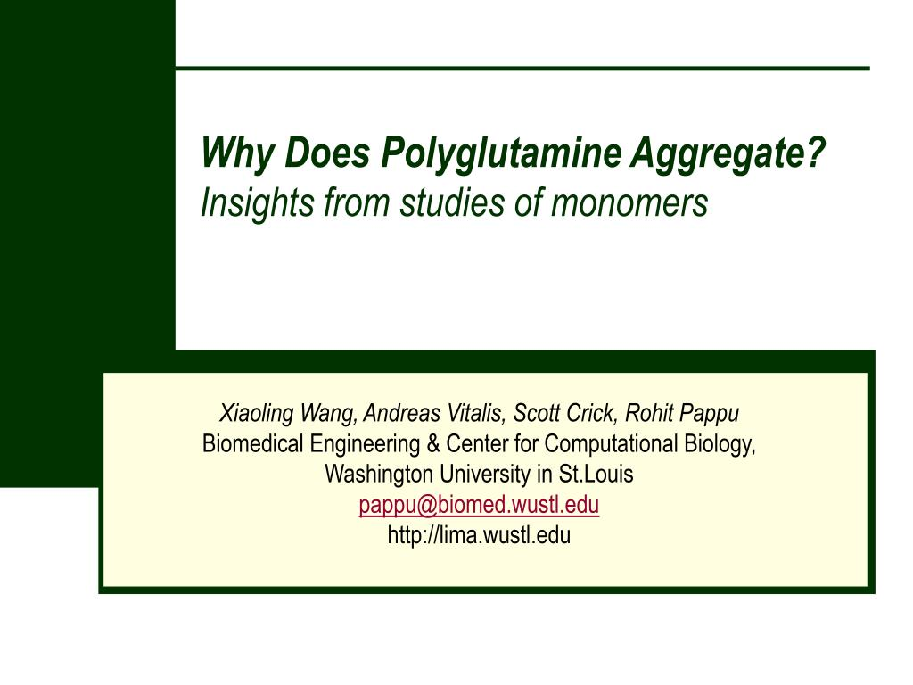 why does polyglutamine aggregate insights from studies of monomers l.