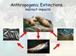 anthropogenic extinctions indirect impacts21