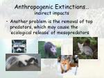 anthropogenic extinctions indirect impacts22