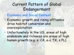 current pattern of global endangerment48