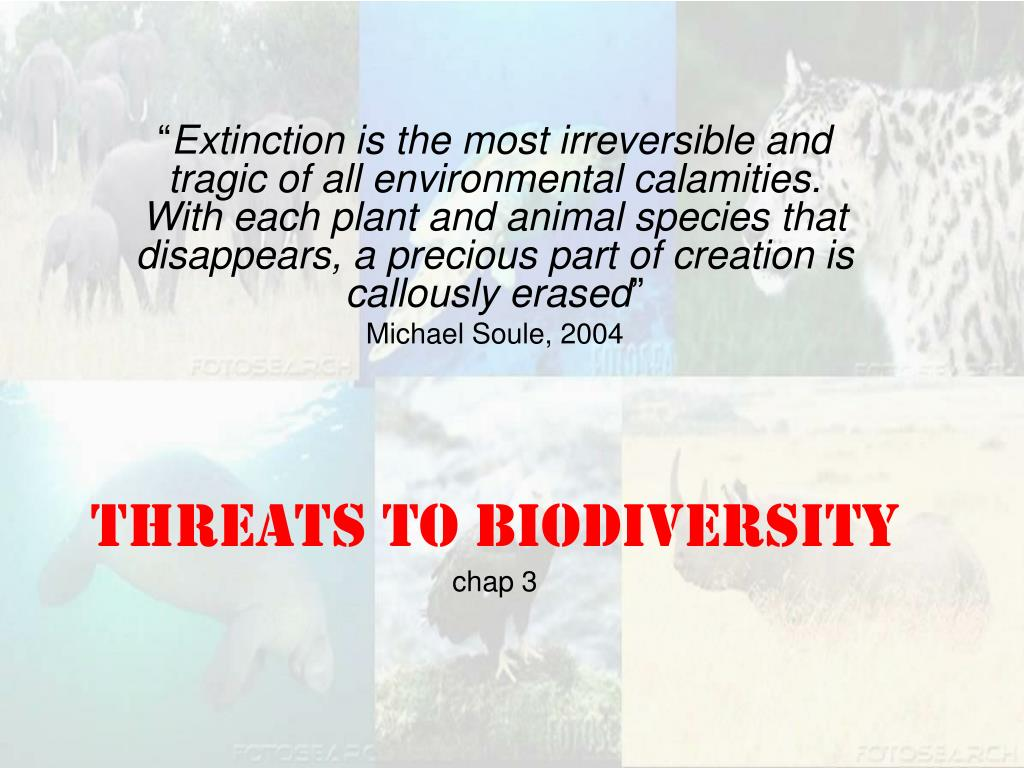 threats to biodiversity chap 3 l.