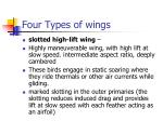four types of wings30