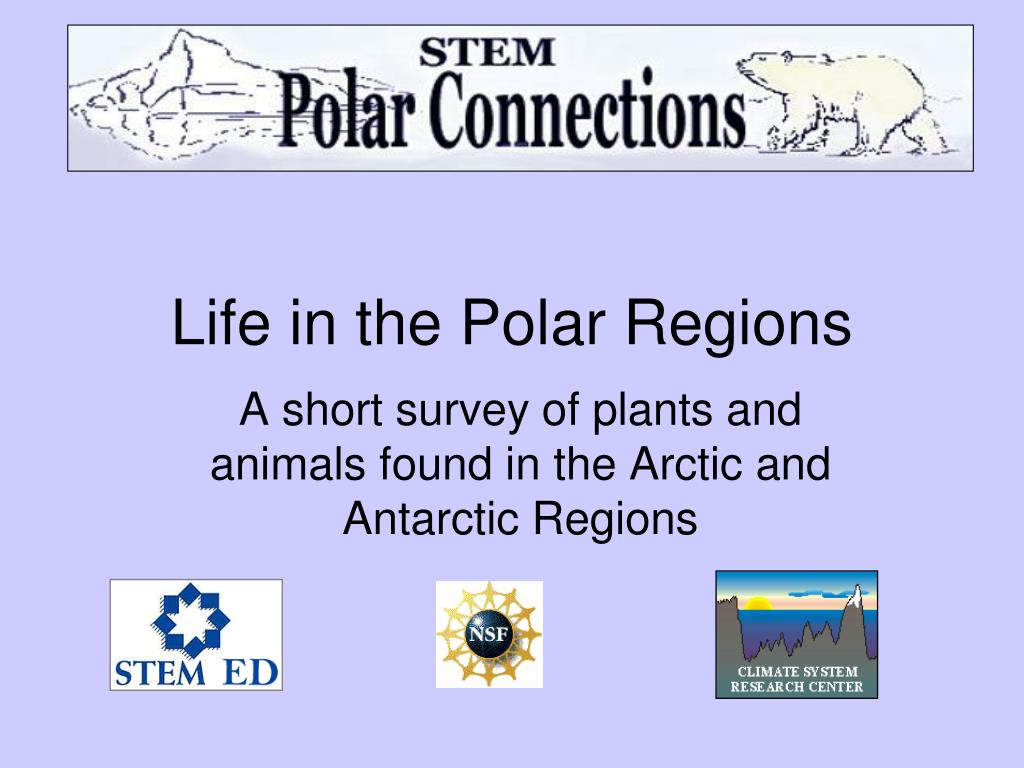 life in the polar regions l.