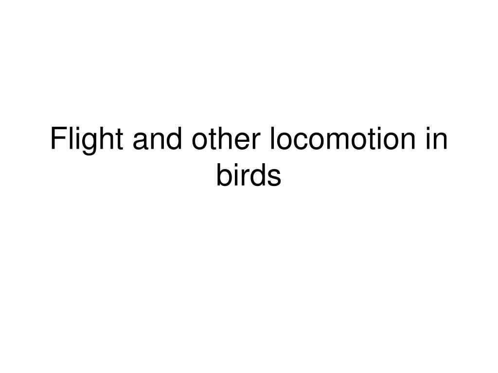 flight and other locomotion in birds l.