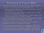summary of future work