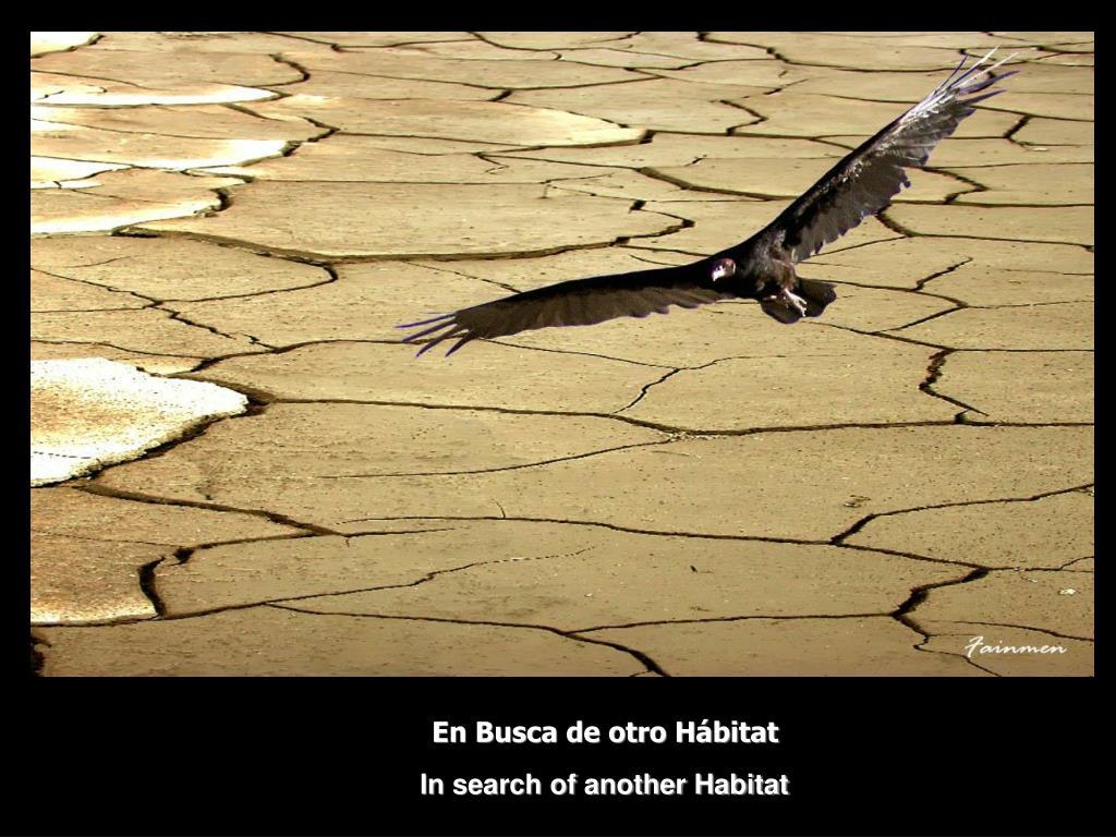 En Busca de otro Hábitat