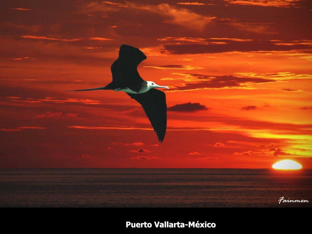Puerto Vallarta-México