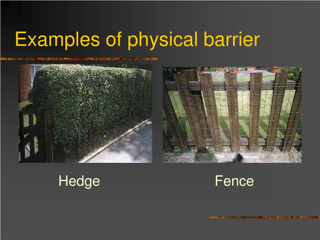 Examples of physical barrier