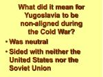 what did it mean for yugoslavia to be non aligned during the cold war