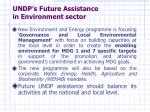 undp s future assistance in environment sector