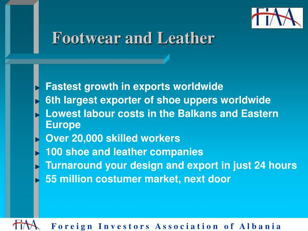 Footwear and Leather