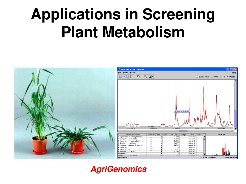 Applications in Screening Plant Metabolism