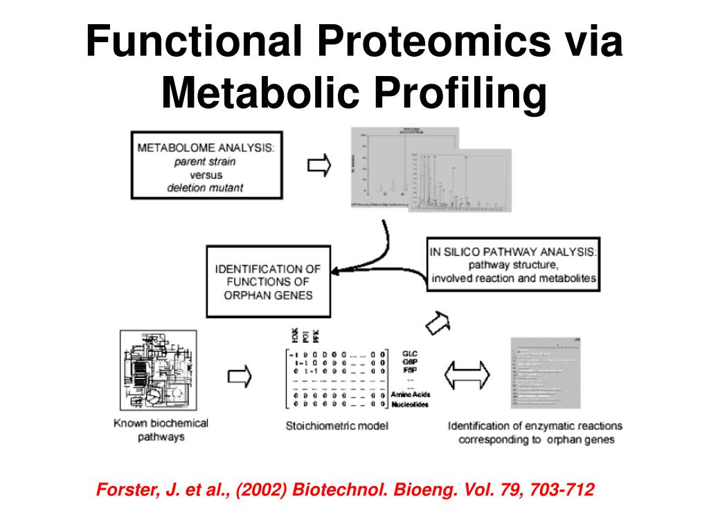 Functional Proteomics via Metabolic Profiling