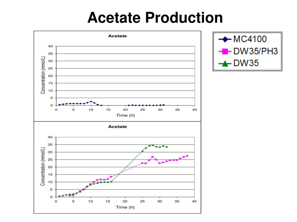 Acetate Production