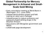 global partnership for mercury management in artisanal and small scale gold mining12