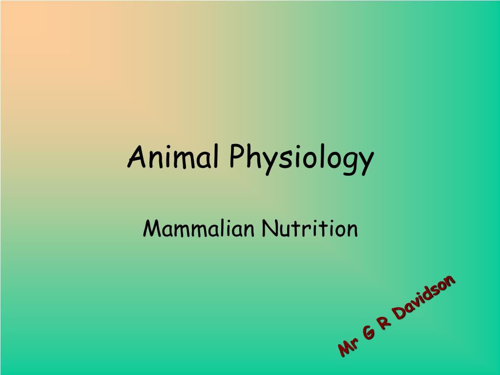 animal physiology l.