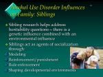 alcohol use disorder influences on family siblings