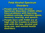 fetal alcohol spectrum disorders3
