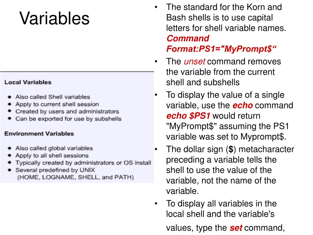 PPT - Shell Features PowerPoint Presentation - ID:151615