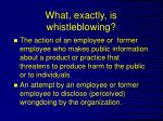 what exactly is whistleblowing