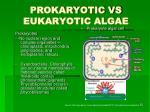 prokaryotic vs eukaryotic algae