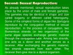 second sexual reproduction