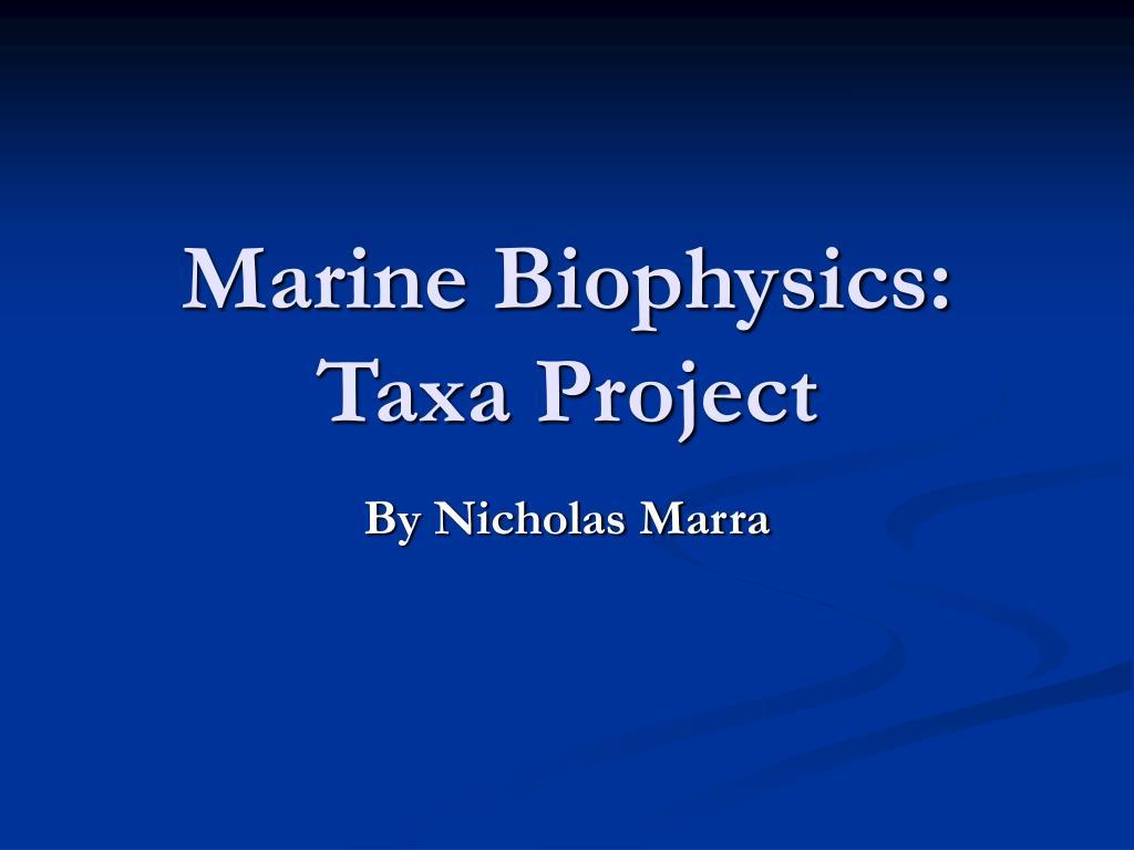 marine biophysics taxa project l.