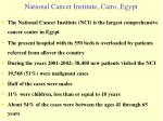 national cancer institute cairo egypt