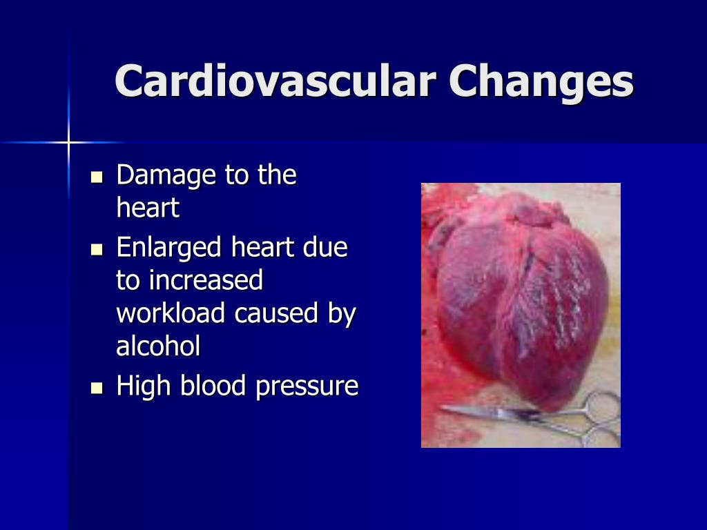 Cardiovascular Changes