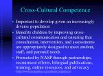 cross cultural competence1