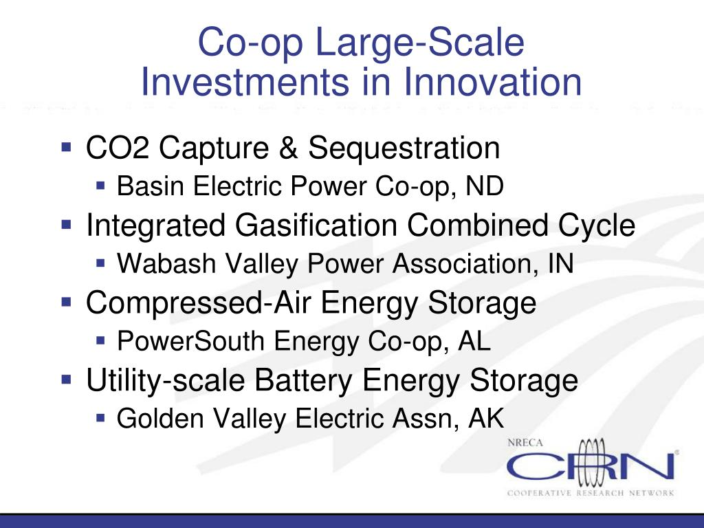 Co-op Large-Scale