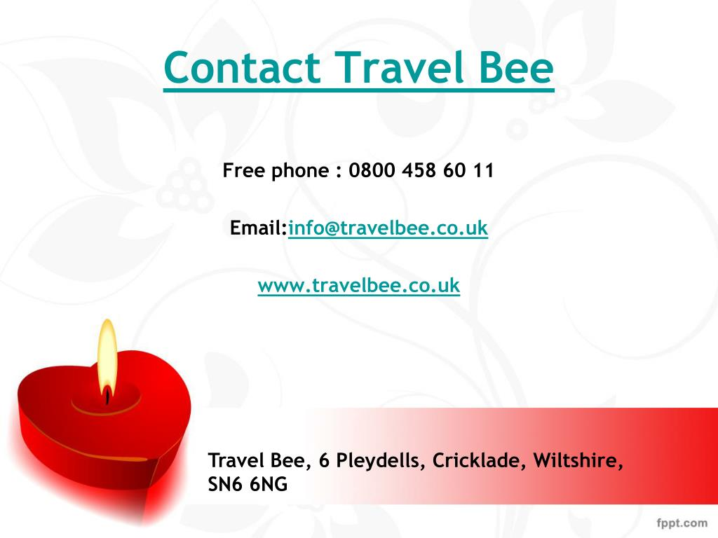 Contact Travel Bee