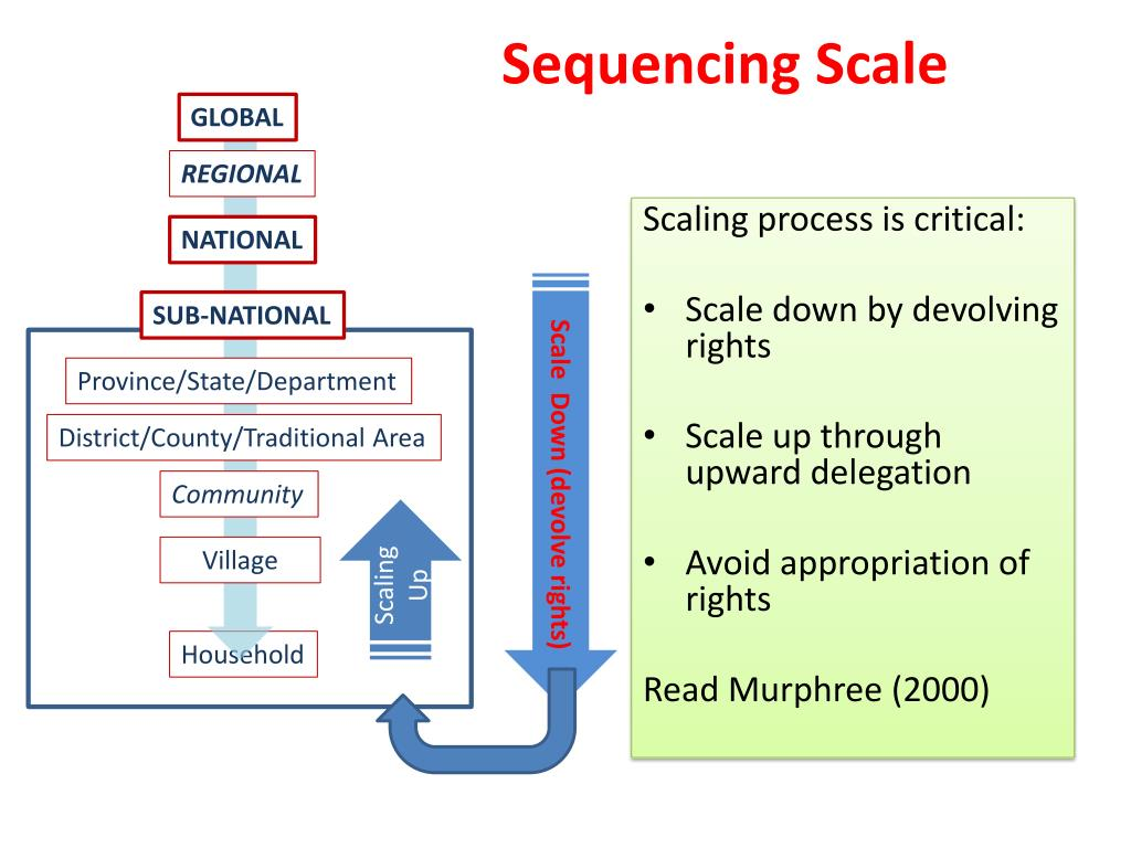 Sequencing Scale