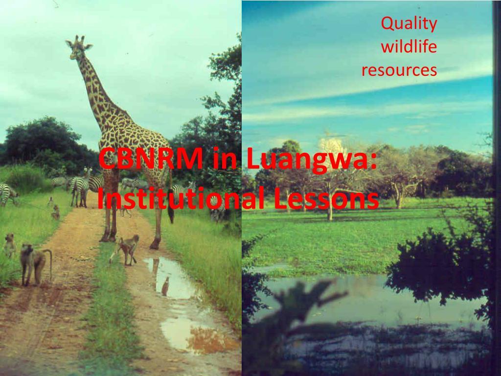 Quality wildlife resources