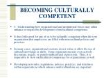 becoming culturally competent19