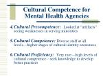 cultural competence for mental health agencies144