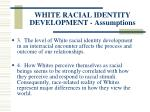 white racial identity development assumptions113