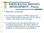 white racial identity development process118
