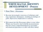 white racial identity development process122