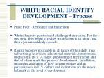 white racial identity development process124