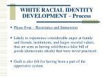 white racial identity development process125